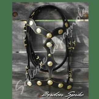 Bridon spectacle baroque