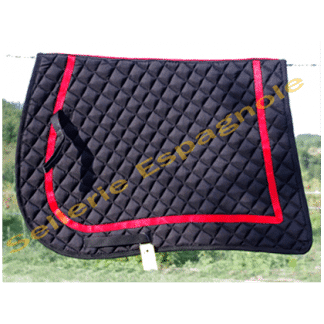 tapis pointe noir galon rouge